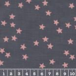 Enduit brillant gris nuée étoiles roses